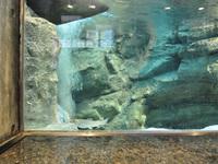 川の博物館5
