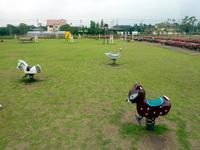 江南総合公園5