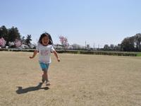 桜リバーサイドパーク7